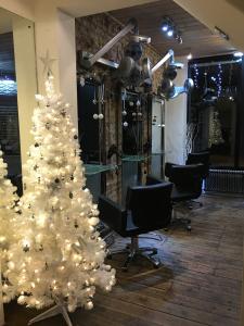 salon & tree